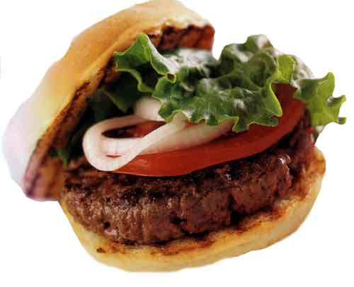 http://www.panix.com/~clay/cookbook/images/hamburger02.jpg