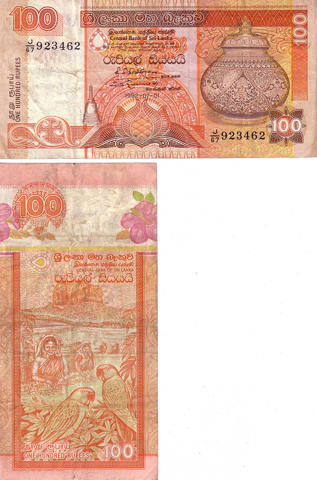 Rupee Note Size Sri Lanka 100 Rupees Note